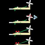 Rube Goldberg, l'éolienne.