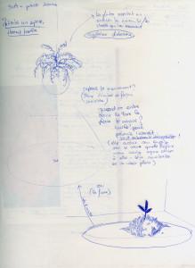 projet plantes soa 1