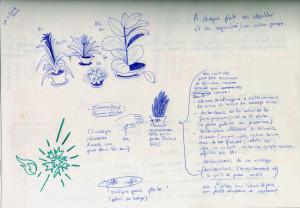 projet plantes soa